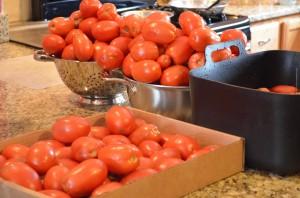 Washing Tomatoes and Sorting them. @coreylatislaw.com